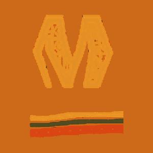 logo icone